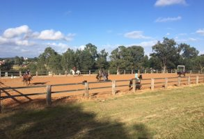 The latest from the Equestrian Centre featured image