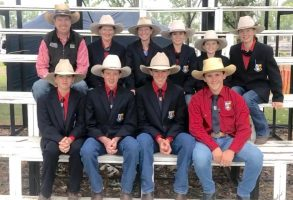 Cattle Club Update | Inglewood Show featured image